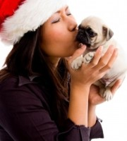 ID-10087211 woman and christmas puppy by imageryMajestic